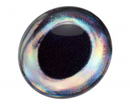 3D Epoxy Fish Eyes, Tuna, 6 mm